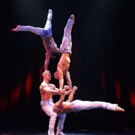Quick change / Aerialist / Banquine / Strong man / Acrobats