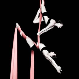 Female Duo Aerial Artists