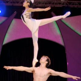 Swan Lake Ballet Act
