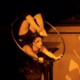 Lira, Silks & Pole Demo