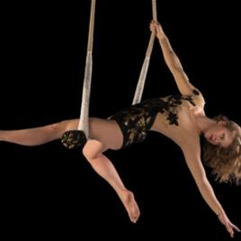 Swinging Trapeze Act