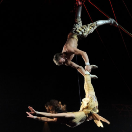 Duo Aerial Pole Act