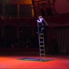 Balance ladder Act