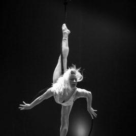 Swinging trapeze / Lyra / Silk act