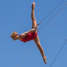 Flying trapeze / Silk / Lyra