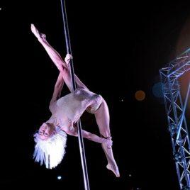 Female Dance Pole Act