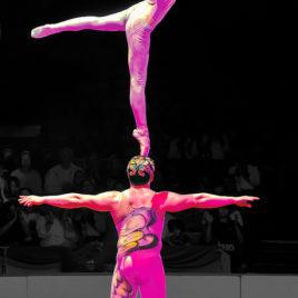 Ballet on Shoulder Act