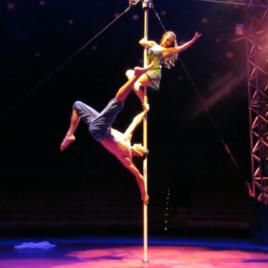 Duo Silk / Lyra / Chains / Dance pole / Dance trapeze
